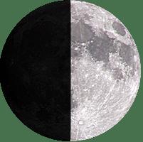Moon age 7